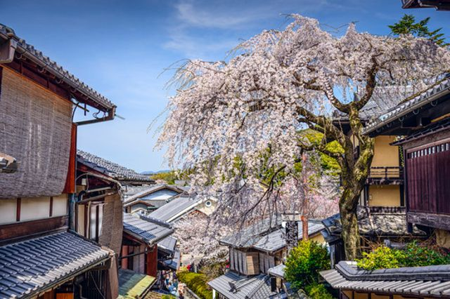 Higashiyama District | Japanesquest