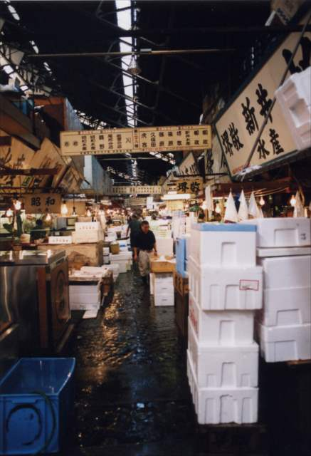 Wholesalers in Tsukiji Fish Market | Japanesquest