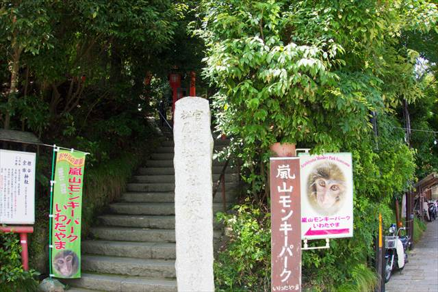 Hiking trails in Arashiyama Monkey Park Iwatayama | Japanesquest